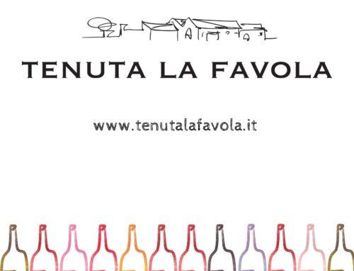 Scegli il tuo colore preferito e ordina on line i tuoi vini