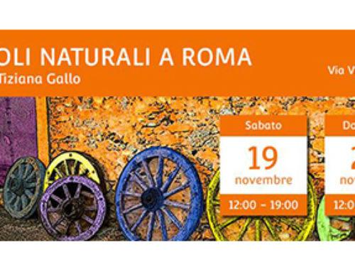 Vignaioli Naturali 19-20 novembre 2016 Roma