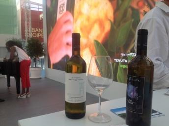 vini-tenuta-lafavola-expo